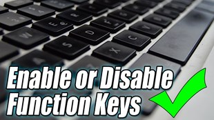 How to Enable, Disable function keys FN + F1, F2, F3, ... F12 on Laptop