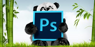 Using Photoshop actions and Tinypng plugin to batch resize images for WordPress upload