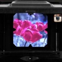 Come utilizzare i filtri su Instagram