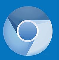 Chrome options binary location