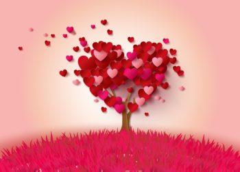 Top 50 en güzel Seni Seviyorum görüntüleri birçok anlamı ile