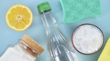 सिरका के साथ सफाई करते समय जेब के 19 शानदार तरीके