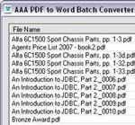 AAA PDF to Word Converter