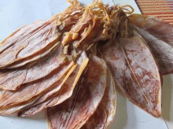 Wanita hamil boleh makan sotong kering? Adakah selamat untuk janin?