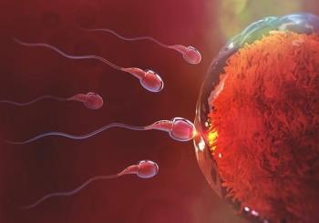 Resipi membantu wanita makan telur dan cepat hamil