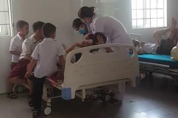 新學年剛剛開始,醫院發生了很多因蜜蜂st傷的事故:廣三有26名學生,伍安有6名學生。