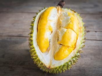Est-ce que manger du durian pendant lallaitement peut changer le goût du lait maternel, incitant le bébé à critiquer le lait?