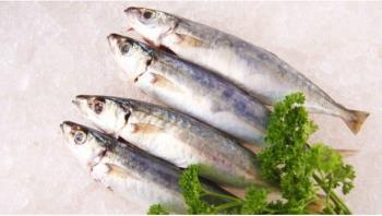 Mère a choisi de manger des pétoncles? Ce poisson est-il riche en mercure?