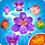 Blossom Blast for Android Saga