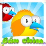 Shoot birds for Android