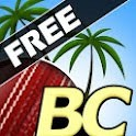 Beach Cricket for Android
