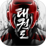 Global Taekwondo Tournament Game for iOS