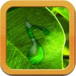Natural Musical Massage for iOS