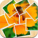 Pictify Photo Collage for iPad