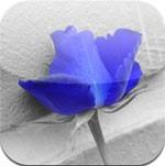 ezColor Lite for iOS