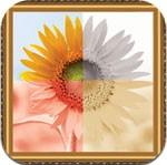 Pic-Frames Lite for iOS