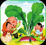 Pluck radish for iOS