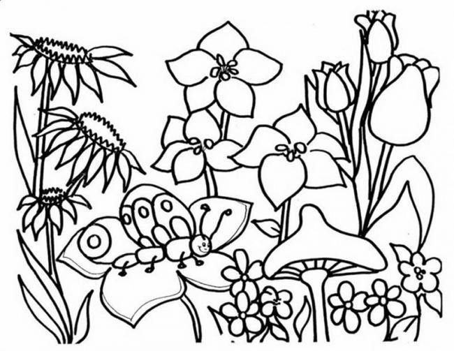 مجموعة من أجمل صور تلوين الحدائق للأطفال
