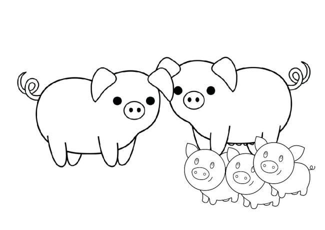 مجموعه ای از زیباترین تصاویر رنگ آمیزی خوک
