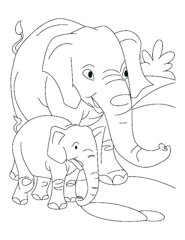 Coleção das mais belas imagens de elefante para colorir
