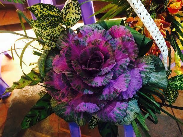 最も美しいキャベツの花の画像を組み合わせる