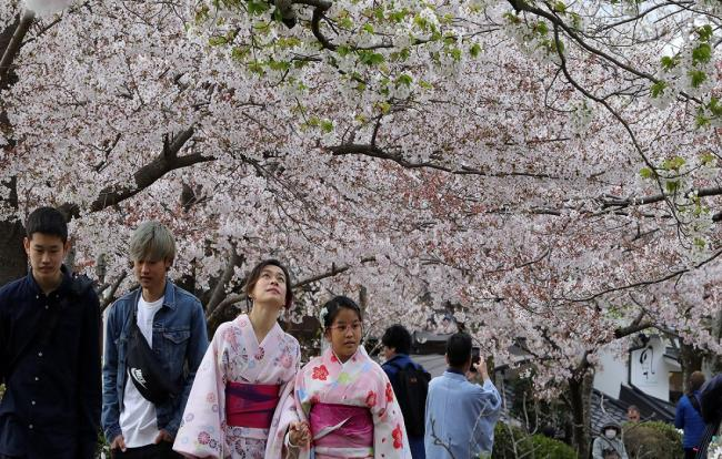 مجموعة من اجمل صور اليابان