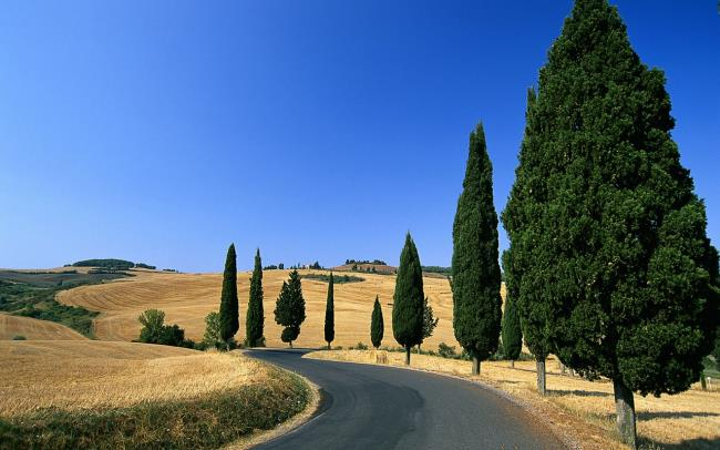 Top Bilder der schönsten Straßen der Welt