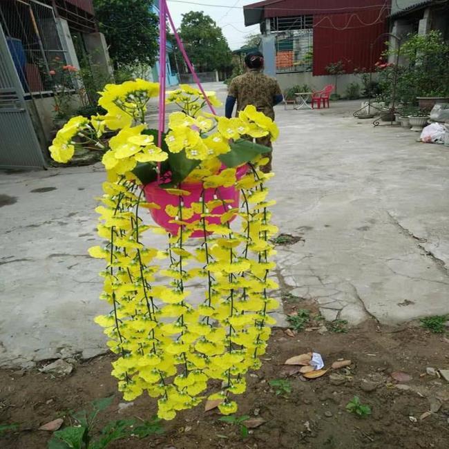 Die schöne Orchideentanzfrau 85
