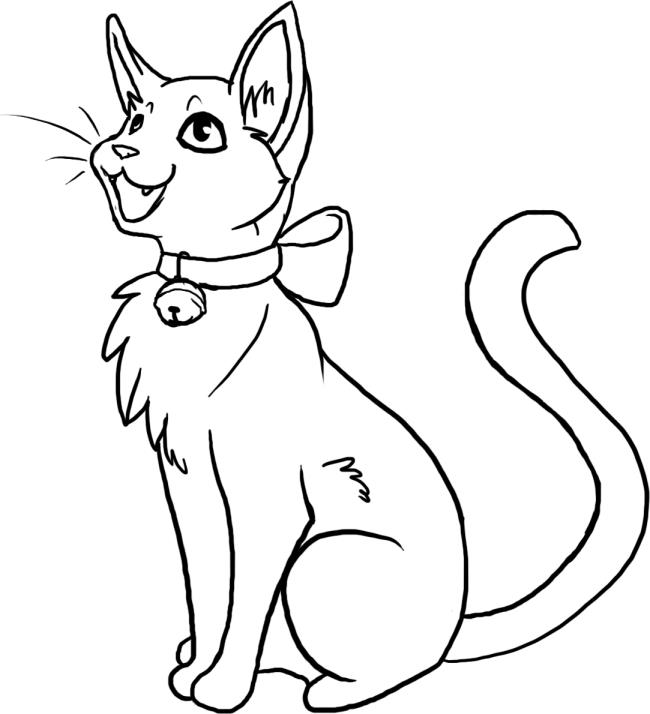 Sammlung der schönsten Katzenbilder
