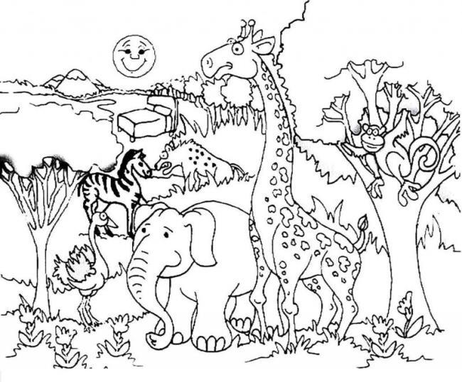 森に住む動物たちのぬり絵のまとめ