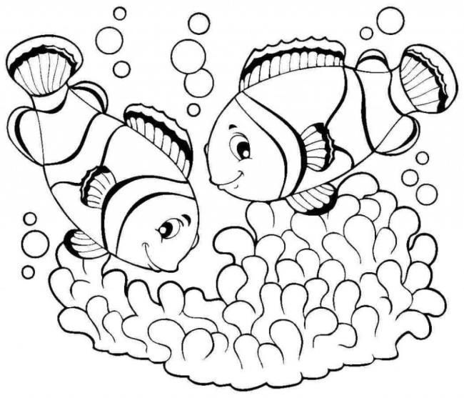 水中に住む動物のぬり絵のまとめ