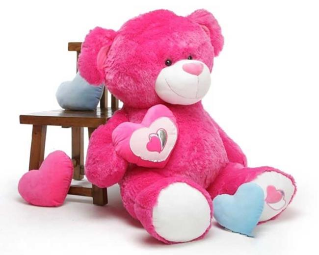 Sammlung der schönsten Teddybärbilder