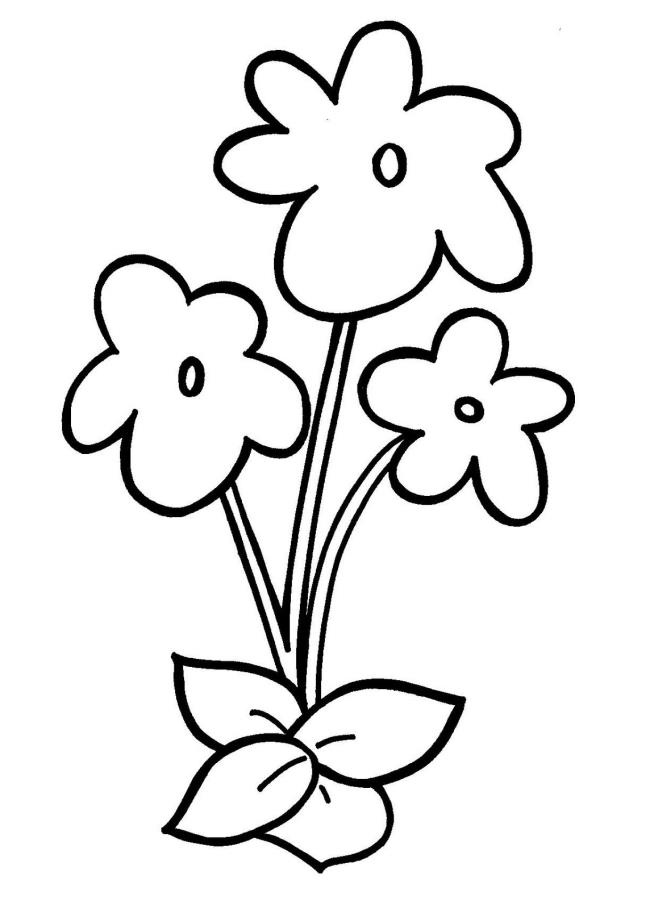 Sammlung von 4 Jahre alten Malvorlagen mit Blumen