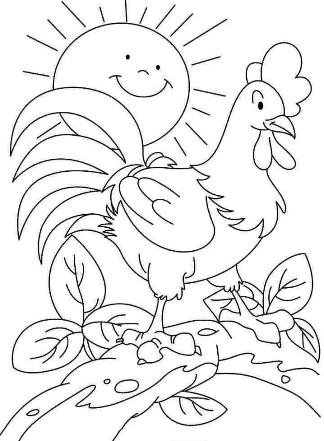 ملخص صور التلوين الجميلة للدجاج للأطفال
