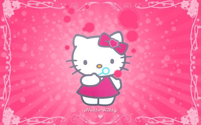 Image de chat mignon chat mignon