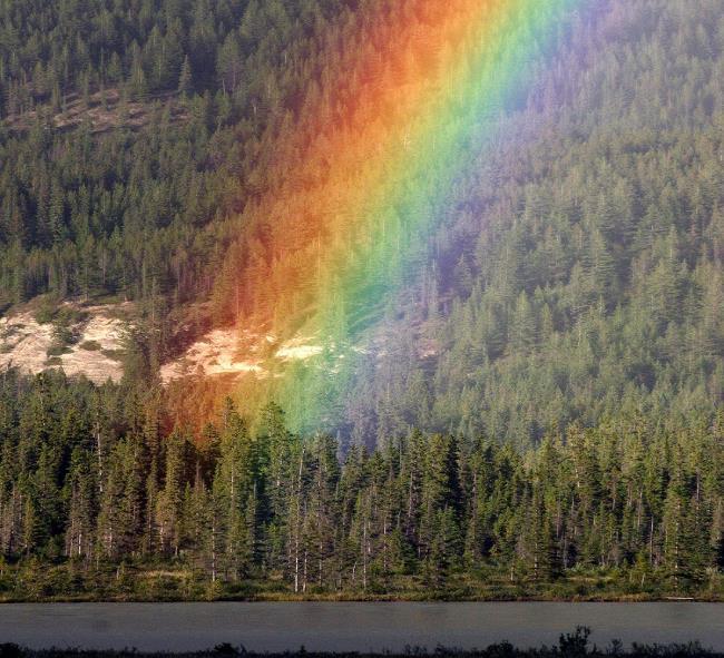 最も美しい虹の画像のコレクション