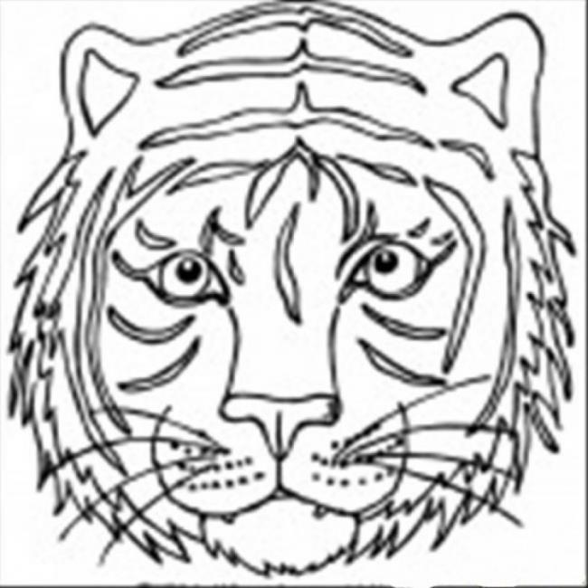 مجموعة من أجمل صور تلوين النمر