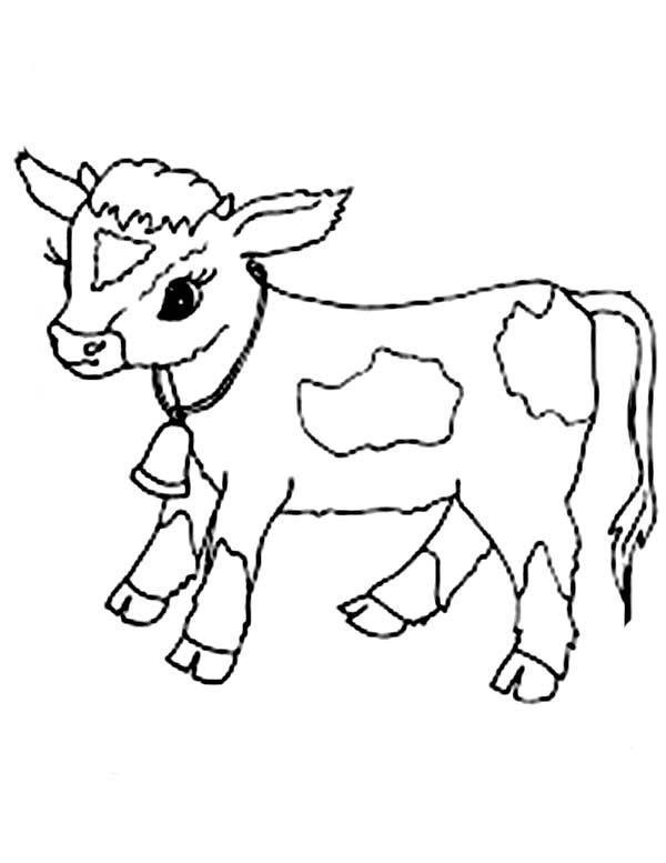 बच्चे गायों की सबसे खूबसूरत तस्वीरों का संग्रह