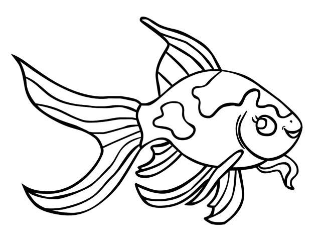 Rezumatul celor mai frumoase imagini cu pești de aur pentru copii