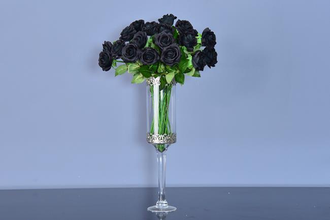 Koleksi gambar bunga ros hitam yang paling indah