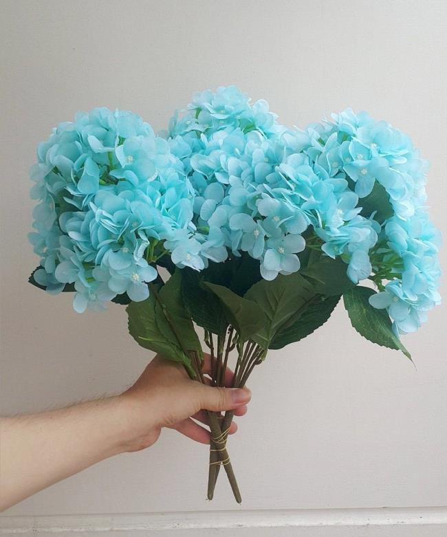 सुंदर हाइड्रेंजस शादी के फूल