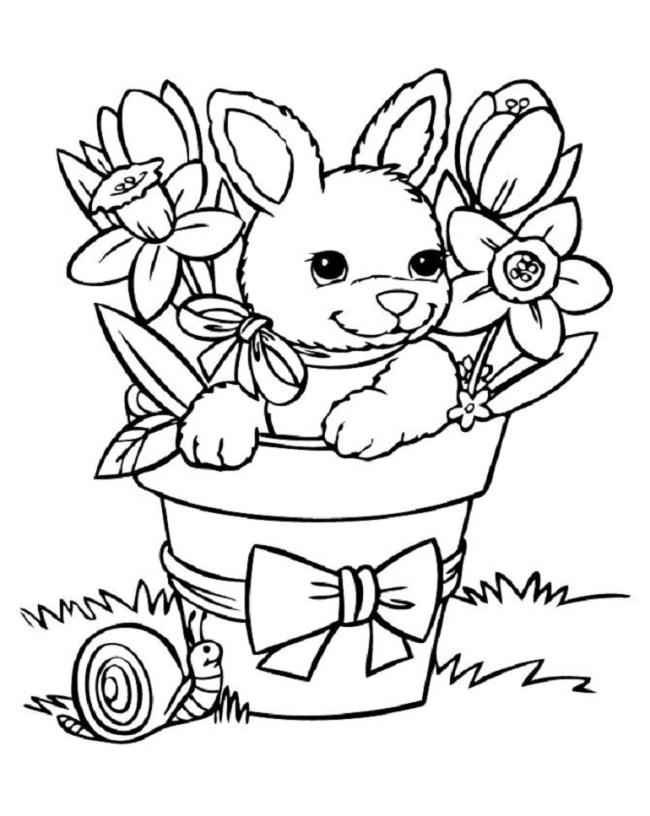 Sammlung von schönen Malvorlagen von Kaninchen
