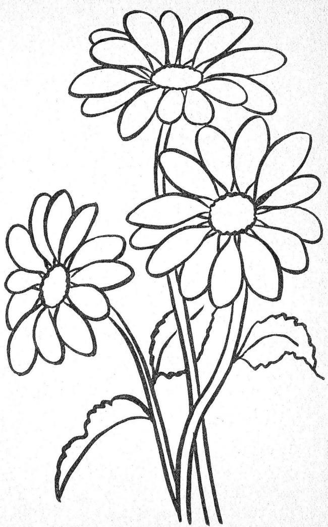 مجموعة من لوحات الزهور الجميلة
