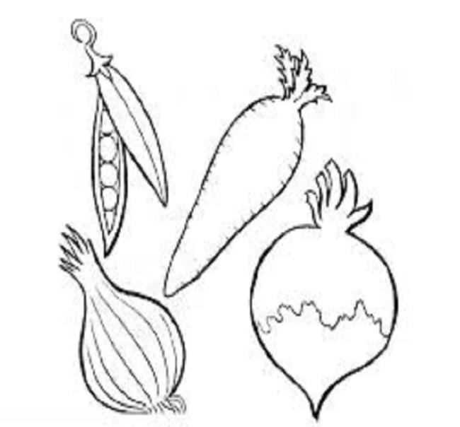 Zusammenfassung der Malbilder von Gemüse