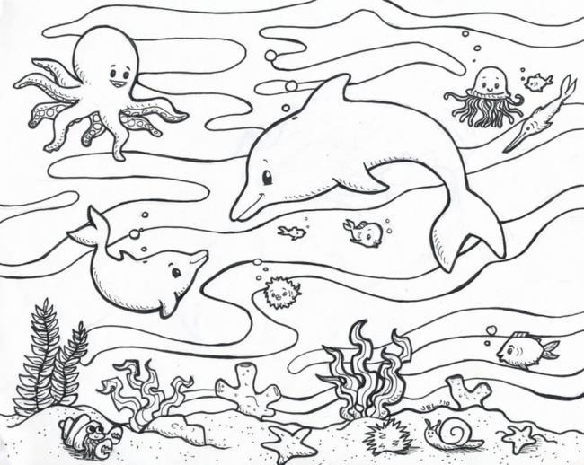 مجموعة من أفضل اللوحات البحرية الملونة للأطفال 1