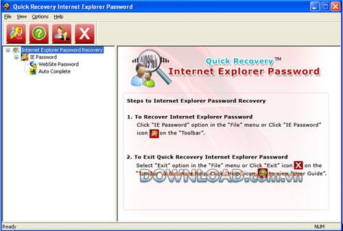 ؛ Quick Recovery Internet Explorer Password - استعادة كلمات مرور Internet Explorer