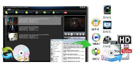Videokv DVD Ripper - Software zum Rippen von DVDs