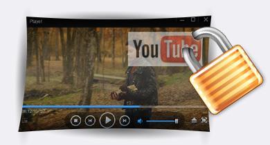 Video Watermark Pro5.1-ビデオ透かしソフトウェア