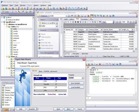 MySQL 8.0.16 - Datenbankverwaltungssystem
