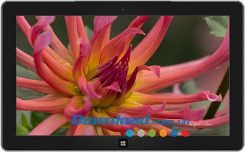 Thema Garden Glimpses 3 - Thema Garden Glimpses 3